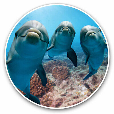 2 X Vinyl Stickers 7.5cm - Awesome Happy Dolphins Underwater Cool Gift #8336 • 2.49£