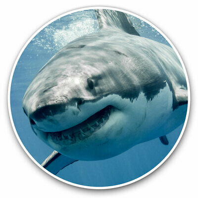 2 X Vinyl Stickers 7.5cm - Cool Great White Shark Ocean Diving Cool Gift #8474 • 2.49£