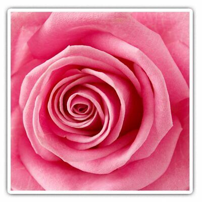 2 X Square Stickers 10 Cm - Macro Shot Pink Rose Flower Cool Gift #16671 • 2.49£
