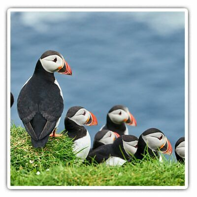 2 X Square Stickers 10 Cm - Puffins On Mykines Farow Islands Cool Gift #16953 • 2.49£