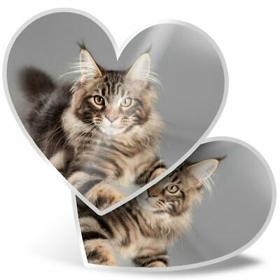 2 X Heart Stickers 7.5 Cm - Cute Maine Coon Cat  #15678 • 2.49£