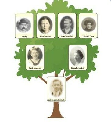 Family Tree Software - Genealogy Software For PC Or MAC • 2.99£