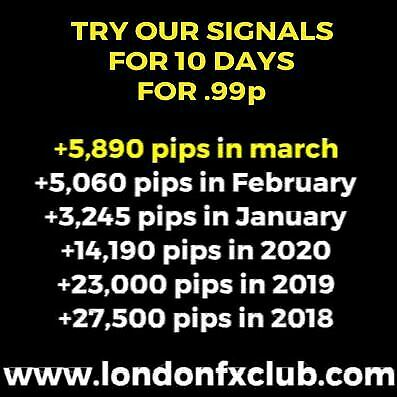 Forex Signals VIP Telegram Link 10 Day Trial For .99p   The Real VIP Experience • 0.99£