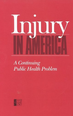 Cls-Injury In America:  BOOK NEW • 42.38£